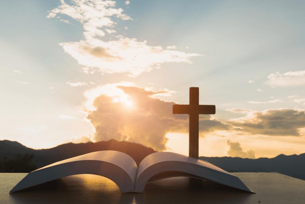 KRISTA AIA PALAI 1